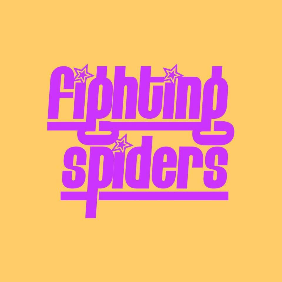Fighting Spiders